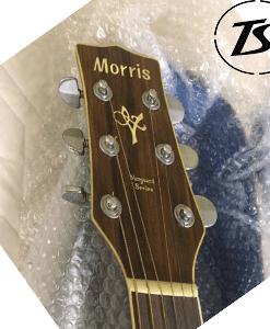 Guitar Acoutic Morris MV 705