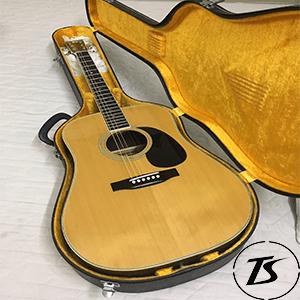 guitar haywagon hw30