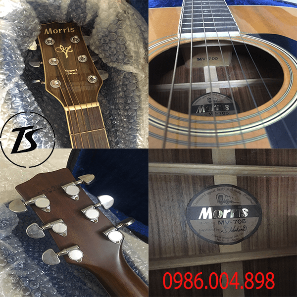 guitar morris mv705