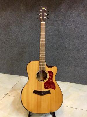 Địa chỉ chuyên bán đàn guitar Biên Hòa chất lượng giá rẻ