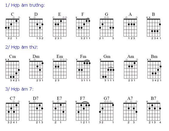 hợp âm cho người mới học đàn guitar tại biên hòa