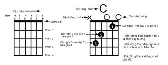 hop-am-guitar
