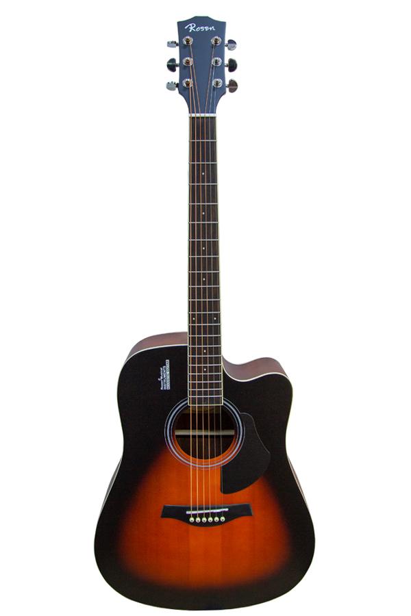 guitar rosen g11 chính hãng biên hòa