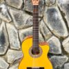 guitar-classic-flamenco